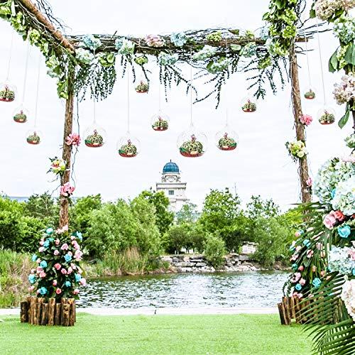 Hängende Glaskugeln 80MM Glas Pflanzen Terrarium Teelichthalter, Kerzenhalter zum Aufhängen,, Christbäume Glaskugel Luftpflanzen Topf Container für Hochzeiten Partyzubehör (50, Mit 2 Löchern)