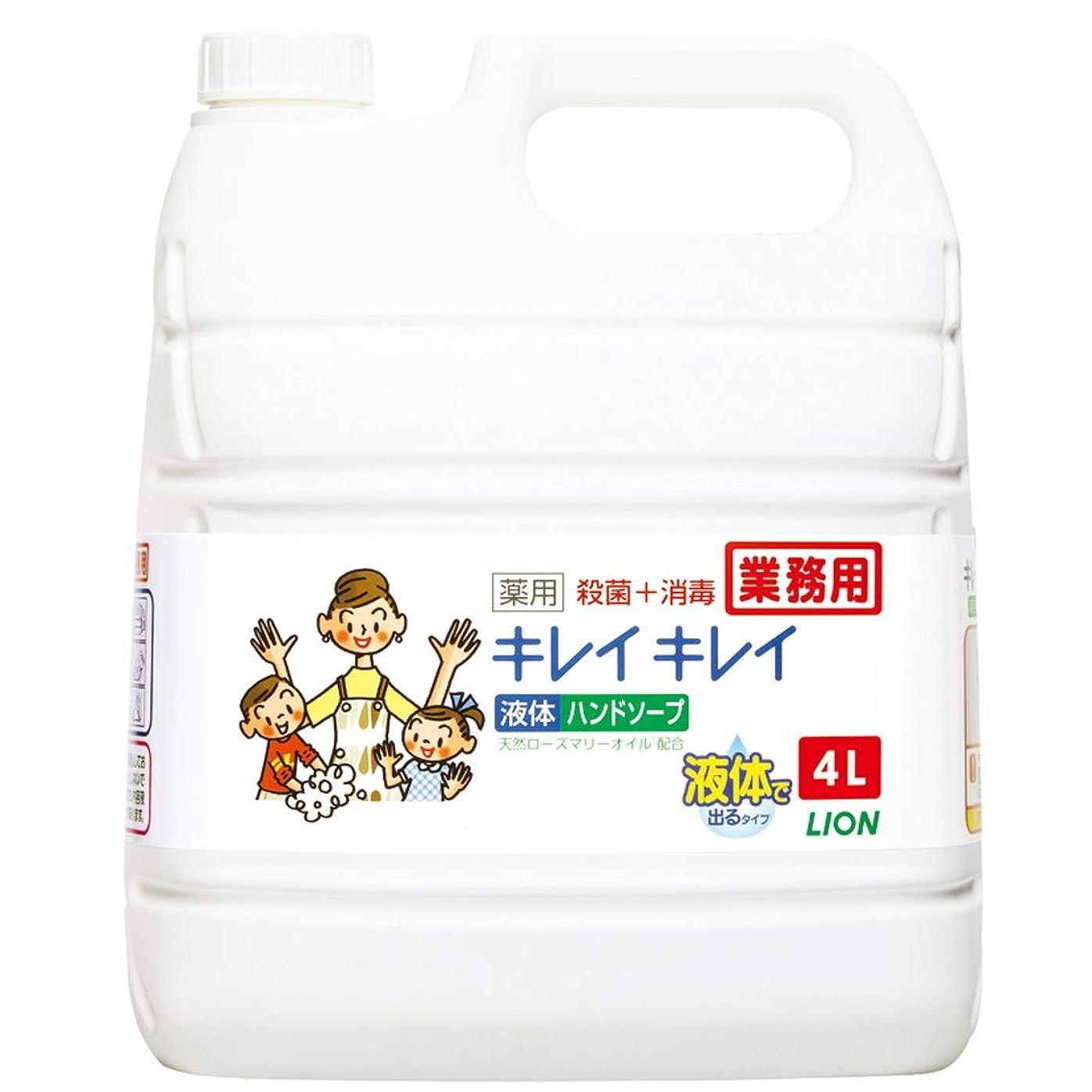 魅力的最悪ふつう【業務用 大容量】キレイキレイ 薬用 ハンドソープ? 4L(医薬部外品)