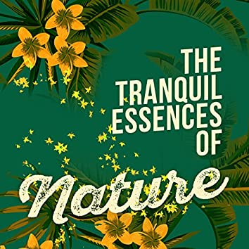 The Tranquil Essences of Nature