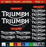 Aufkleber stickers TRIUMPH UNIVERSAL moto decal bike-Motorrad- Cod. 0637 (Argento cod. 090)