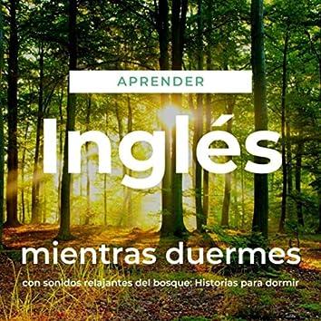 Aprender Inglés Mientras Duermes Con Sonidos Relajantes del Bosque: Historias para Dormir