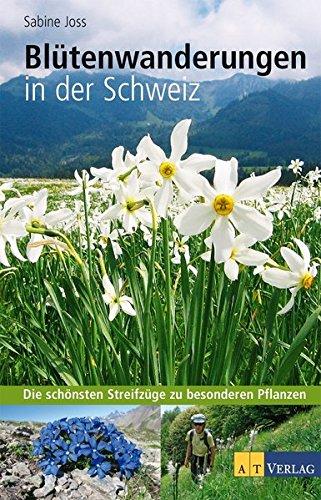 Blütenwanderungen in der Schweiz: Die schönsten Streifzüge zu besonderen Pflanzen