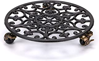 Best cast iron plant height Reviews
