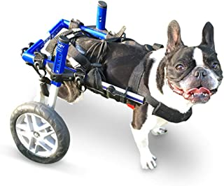 wheels for paralyzed dogs
