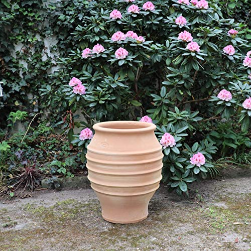 Céramique crète | Amphore classique fait main et résistant au gel | Jardinière en terre cuite pour le jardin / extérieur 50 cm | Décoration d'agave à planter