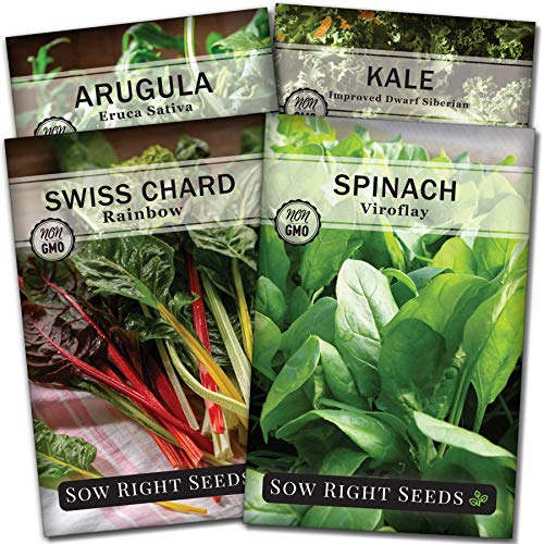 Sow Right Seeds - Power Greens Seed Collection for Planting - Viroflay Spinach, Arugula, Dwarf Siberian Kale, and Rainbow Swiss Chard; Non-GMO Heirloom; Plant and Grow a Powerful Home Vegetable Garden