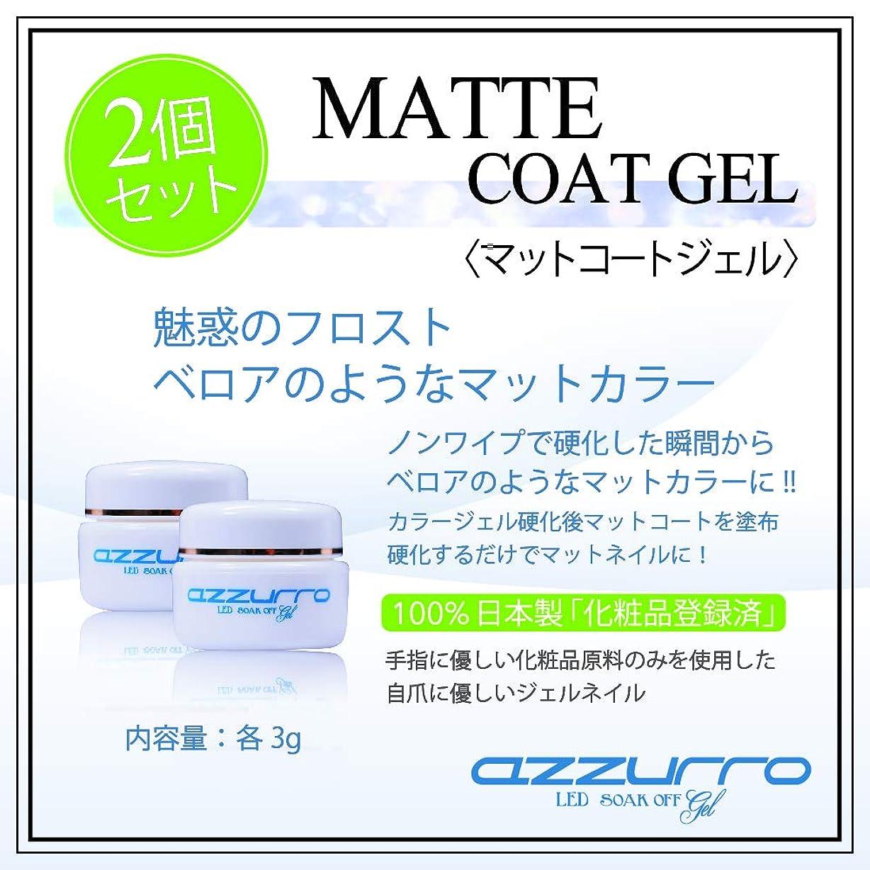 ペイント寄付するヘルメットazzurro アッズーロ マットコートジェル 3g 2個セット