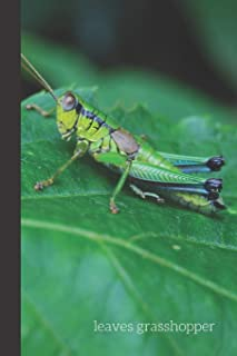 Leaves Grasshopper: small lined Grasshopper Notebook / Travel Journal to write in (6'' x 9'') 120 pages