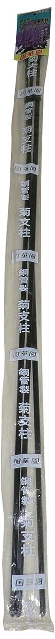 売る情緒的コイル国華園 鋼管製菊支柱 デラックス 90-165cm 3本組