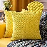 MIULEE 2er Set Granulat Kissenbezug Ananas Weiches Massiv Dekorativen Quadratisch Überwurf...