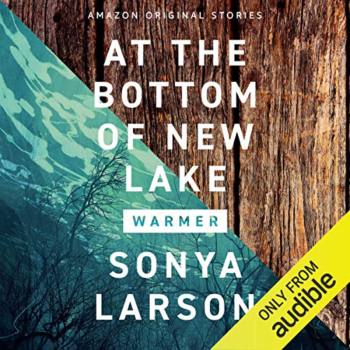 At the Bottom of New Lake Audiobook By Sonya Larson cover art