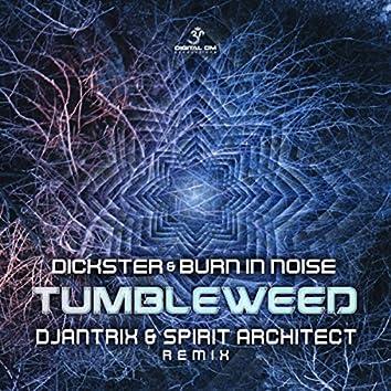 Tumbleweed (Djantrix & Spirit Architect Remix)