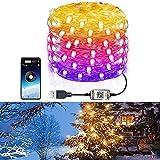 Luces de hadas navideñas controladas por aplicaciones inteligentes, luces de cadena impermeables Bluetooth de color LED personalizadas para jardín, dormitorio, árbol de Navidad de Halloween (20m)