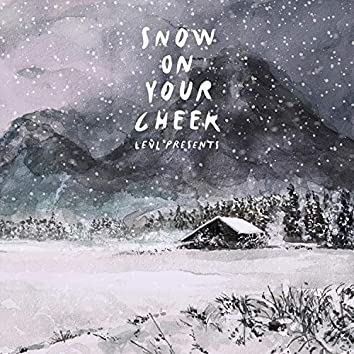Snow On Your Cheek