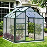 Greenhouse for Outdoors, 6 x 6 x 7 FT Green House Kit, Heavy Duty Walk-in UV Anti & All Weather Sustain Green House for Plants Outdoor (Green)