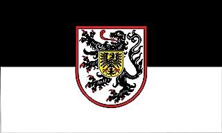 magFlags Large Flag City of Landau Palatinate | Landscape Flag | 1.35m² | 14.5sqft | 90x150cm | 3x5ft - 100% Made in Germa...