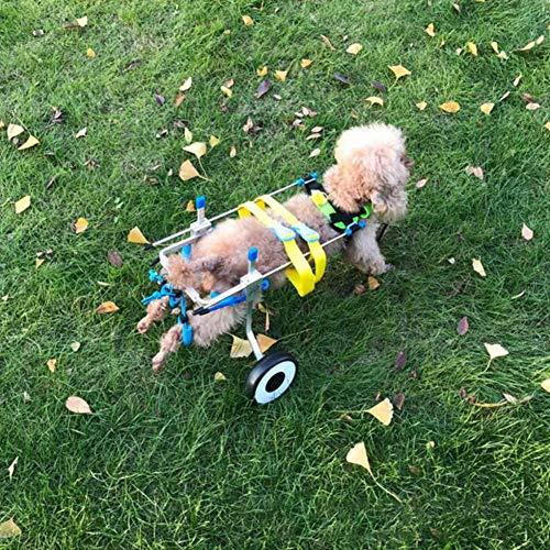 ZF Hund Rollstuhl, Haustier Hinterbein Gliedmaßenverletzung, eine Behinderung, Lähmung Verletzung, Klammer Unterstützung assistierte Rehabilitation Übung Roller,M