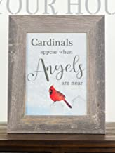 Summer Snow Cardinals Appear When Angels are Near Sympathy Red Cardinal Religious Framed..