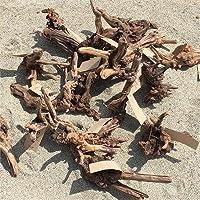 資 形おまかせ 流木 マングローブ系 S 約15cm~20cm