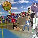 Around the World in a Day [Vinyl LP]