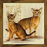 Riolis Kreuzstich-Set Abessinierkatzen, Zählmuster Juego de punto de cruz, diseño de gato de Abessina, algodón, multicolor, 40.0 x 40.0 x 0.1 cm