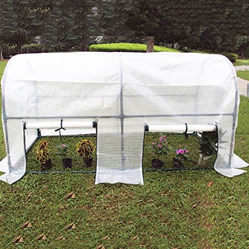 LQQ Tomaten tomatenhaus Hochleistungs-großes Gewächshaus, Begehbares Gartengewächshaus mit Vollstahlrahmen für Terrassenfrüchte Im Freien Gemüse Blumen Pflanzen (Size : 100×100×115cm)