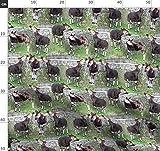 Okapi, Zoo, Foto, Giraffe Stoffe - Individuell Bedruckt von
