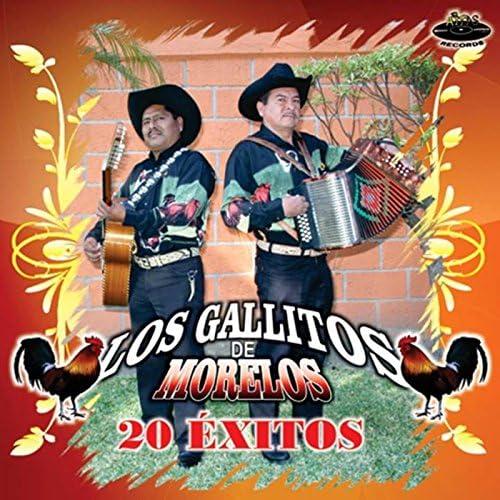 Los Gallitos de Morelos