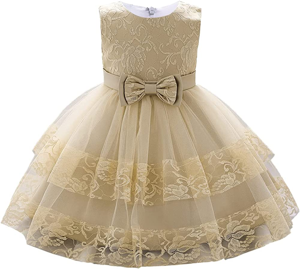 AIMJCHLD 12M-5T Colorado Springs Mall Toddler Baby Girls Mesa Mall Embroidered Wedding Pageant P