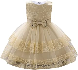 AIMJCHLD 12M-5T Toddler Baby Girls Embroidered Pageant Wedding Party Bridesmaid Ball Gown Dresses