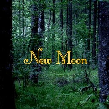 New Moon Piano Music and Vampire Instrumental Songs