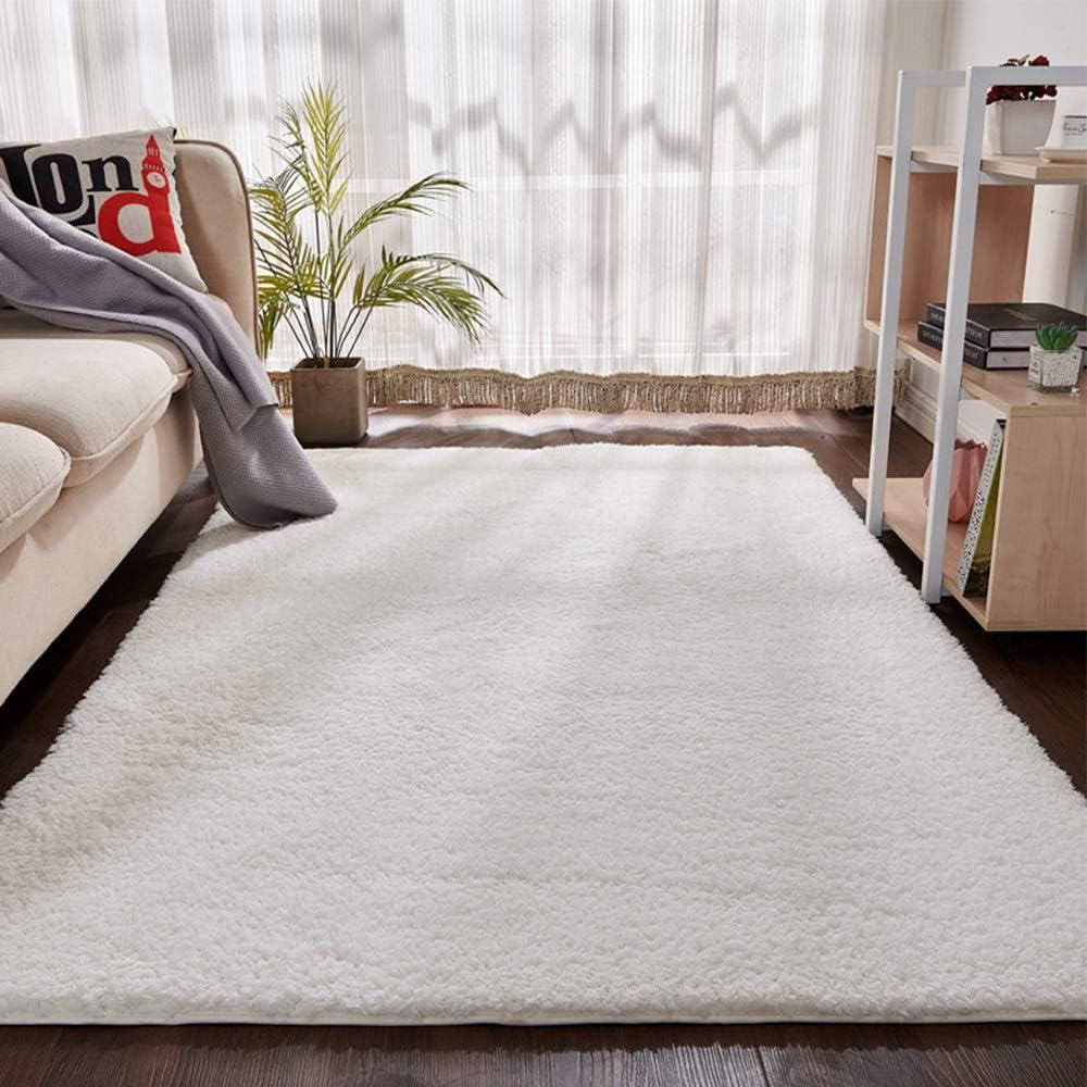Area Rugs 好評受付中 for 舗 Living Room Fluffy Soft Shaggy Suita Super Carpet
