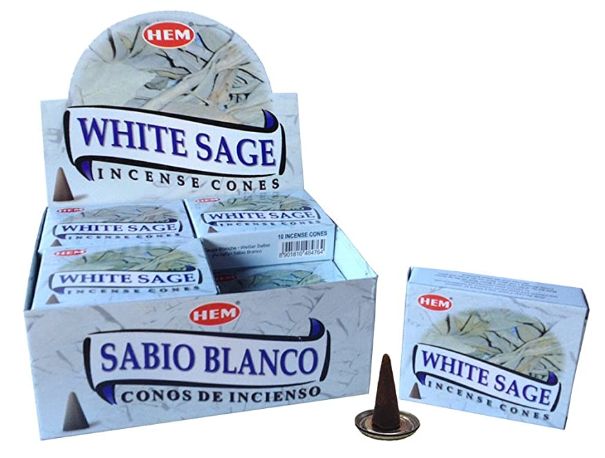 ベンチ戦闘経験HEM ホワイトセージ コーン 36個セット