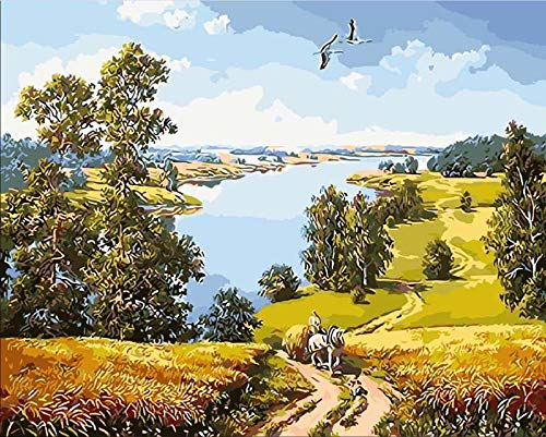 Hermosa finca bricolaje para pintura al óleo Pintura al óleo de DIY principiante Pintar por Numeros dibujo con los cepillos Pintar con sobre Lienzo - Sin Marco(16 * 20 Pulgadas)