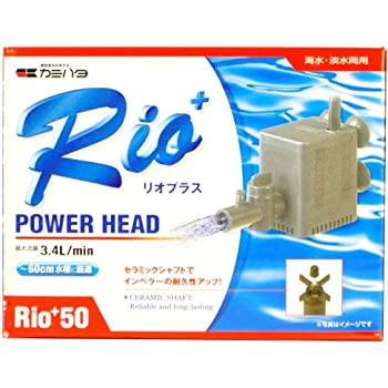 カミハタ Rio+50 (60Hz)