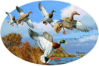 Enjoy It Wild Wings Mallard Ducks Car Sticker, Outdoor Rated Vinyl Sticker Decal