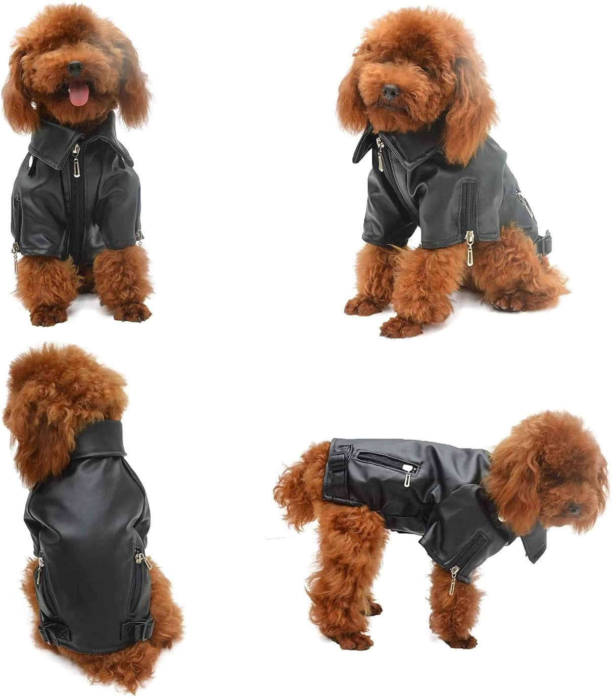 YOHOU Dog Leather OFFicial Genuine Free Shipping mail order Jacket Cold Weather Dogs Motorcycle Windproof