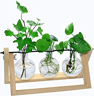 laffeya 3pcs Terrarium Glass Planter Bulb Vase with Retro Solid Wooden Stand and Metal Swivel Holder for Hydroponics Plant...