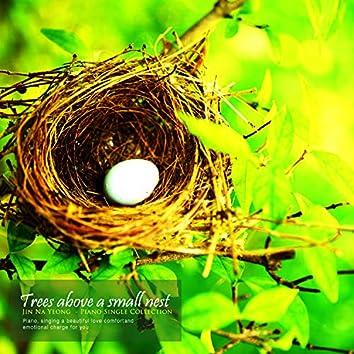 Small Nest On Wood