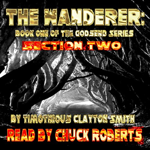 The Wanderer, Volume 2  By  cover art