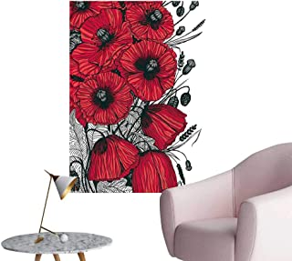 Wall Decorative Poppy Flower Florets Romantic Rural Botany Red Grey Black Pictures Wall Art Painting,16