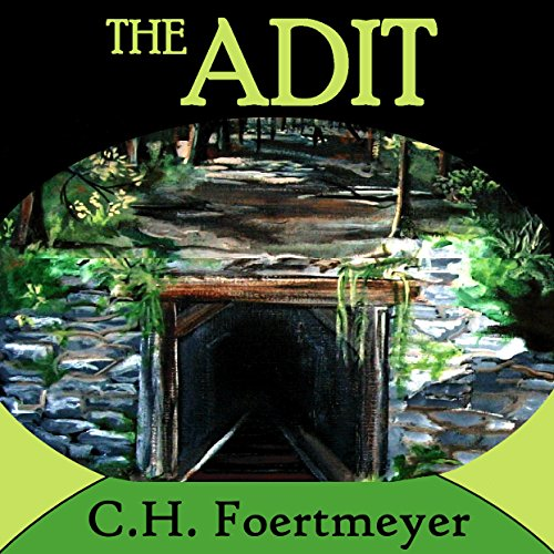 The Adit audiobook cover art