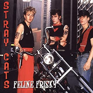 Feline Frisky