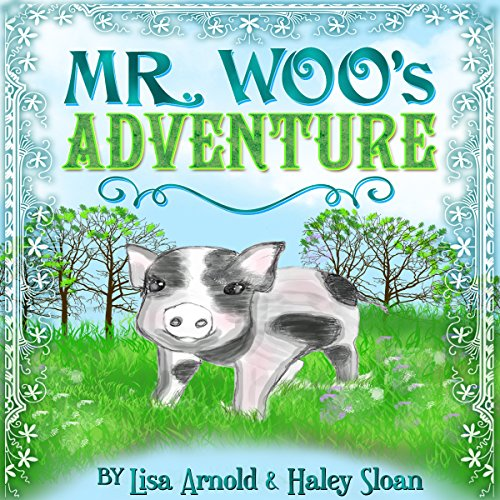 Mr. Woo's Adventure cover art