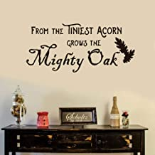reande Decorative Wall Stickers from The Tiniest Acorn Grows The Mighty Oak for Study Room School Classroom Practice Room Exercise Room Library