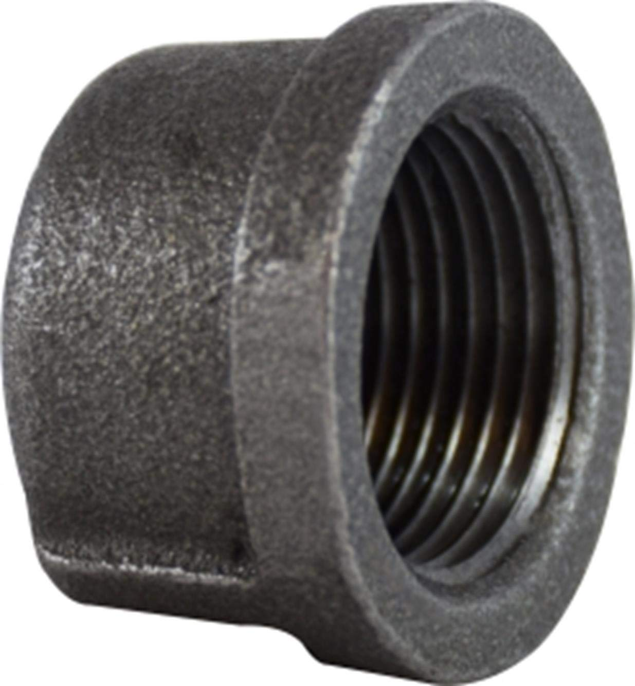 Adaptall B14C-08 Series B14C Malleable Free Shipping Cheap Bargain Gift Solid Seattle Mall Iron Cap BS Female