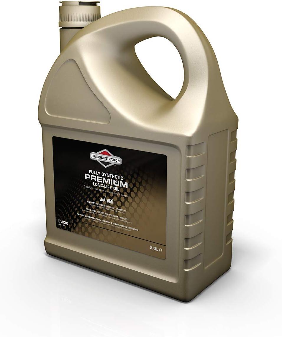 Briggs Stratton 100005e Sae30 Öl 0 6 Liter Auto