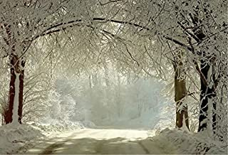 7x5ft White Snow Covered Forest Road Photography Backdrop no Crease Winter Photo Background
