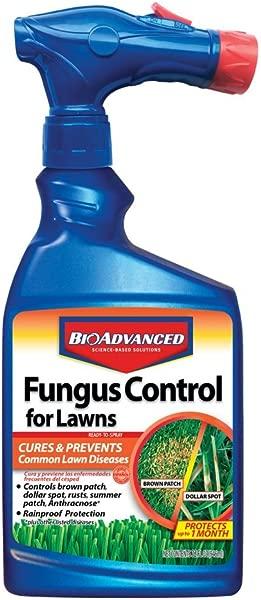 BioAdvanced 701270A 有效杀菌剂与疾病预防真菌控制草坪 32 盎司准备喷洒