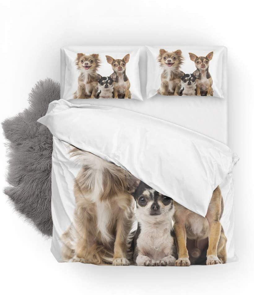 Top Carpenter Bedding Quilt Cover 品質保証 日本限定 3-Piece Set Suit Do Chihuahuas